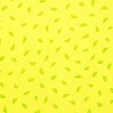 Hojitas verdes sobre amarillo